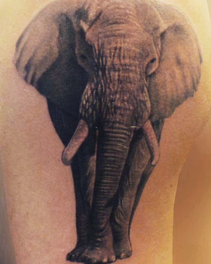 tattoo studio tenerife canary canarie spain spagna elephant front